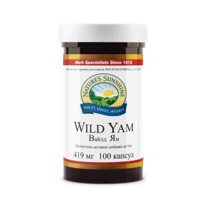 Wild Yam