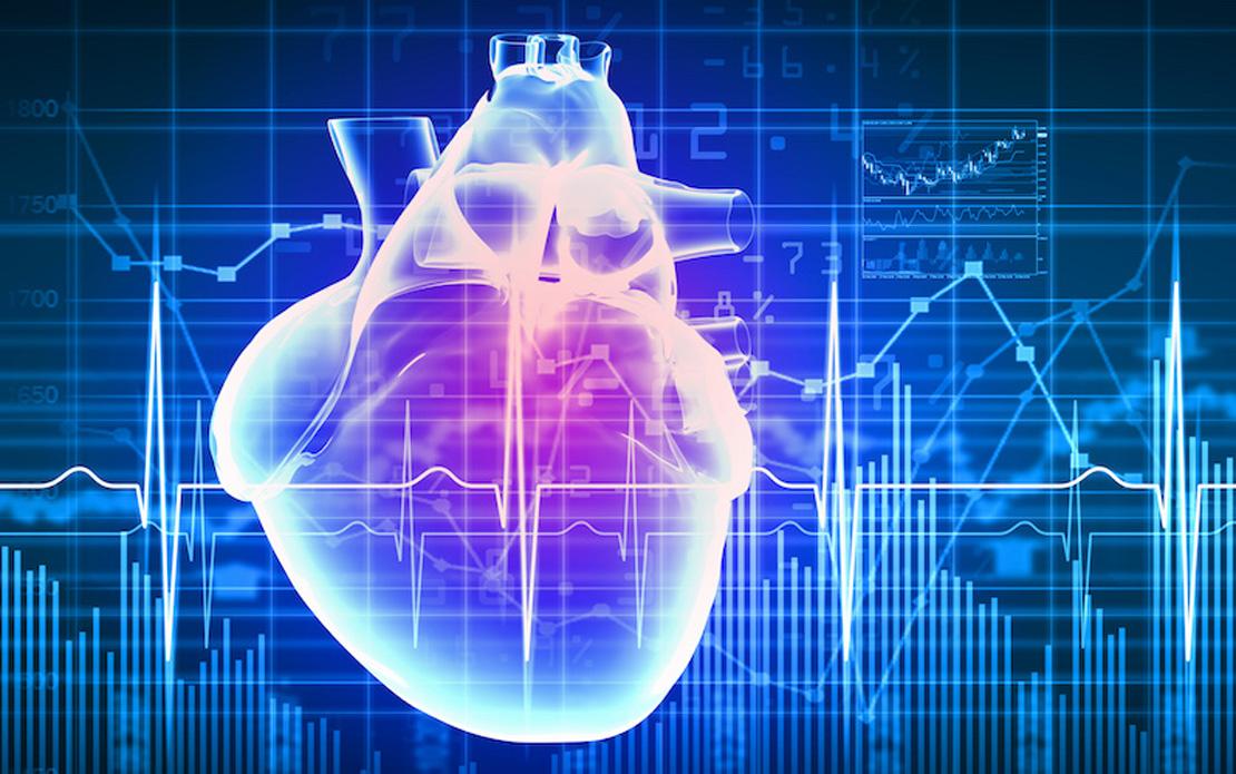 показатели сердца